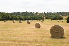Gebied van graan en hooibergen in de Provence stock foto's