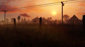 Gebied van Graan Poppy In Sunset Stock Afbeelding