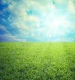 Gebied van gras, blauwe hemel Stock Fotografie