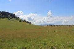 Gebied van gras bovenop Sibebe-rots, Zuid-Afrika, Swasiland, Afrikaanse aard, reis, landschap Stock Foto's