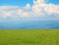 Gebied van gras en hemel Royalty-vrije Stock Afbeelding