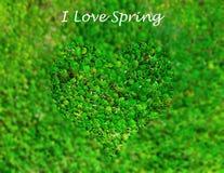Gebied van gras met een hart-vormige bekleding royalty-vrije stock afbeeldingen