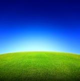Gebied van groene gras en hemel Royalty-vrije Stock Foto's