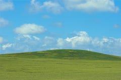 Gebied van hooi met blauwe hemel Stock Afbeelding