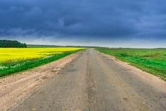 Gebied van raapzaad, canola of koolzaad in Wit-Rusland met landelijke weg en donkere hemel Royalty-vrije Stock Foto