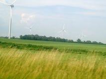 Gebied van Wind Royalty-vrije Stock Foto