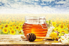 Gebied van zonnebloemen achter honingskruik op lijst Royalty-vrije Stock Afbeeldingen