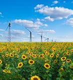 Gebied van zonnebloemen en windkrachtcentrale Stock Foto