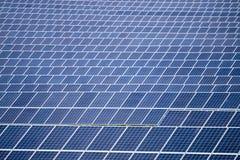Gebied van zonnepanelen Stock Afbeelding
