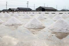 Gebied van zoute pan Stock Afbeeldingen