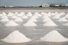 Gebied van zoute pan Stock Foto