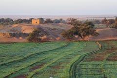 Gebieden bij Dahla-oase stock afbeelding