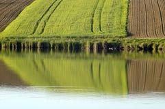 Gebieden door het meer Stock Afbeeldingen
