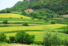 Gebieden door zeer mooie kleuren op heuvelsheuvels in de provincie van Padua in Veneto (Italië) Royalty-vrije Stock Foto