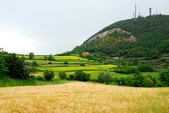 Gebieden door zeer mooie kleuren op heuvelsheuvels in de provincie van Padua in Veneto (Italië) Royalty-vrije Stock Fotografie