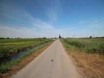 Gebieden en landbouwbedrijven met landweg in Zuidplaspolder in Moordrecht in Nederland stock foto