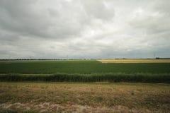 Gebieden en landbouwbedrijven met landweg in Zuidplaspolder in Moordrecht in Nederland royalty-vrije stock foto