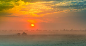 Gebieden en weiden tijdens zonsondergang Royalty-vrije Stock Foto