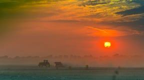 Gebieden en weiden tijdens zonsondergang Stock Fotografie