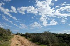 Gebieden, heuvels en mooie hemel in Judea, Israël royalty-vrije stock afbeelding