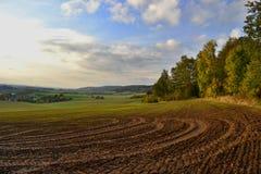 Gebieden, weiden en boslandschap, Tsjechische republiek royalty-vrije stock foto's