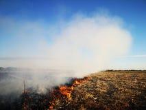 Gebiedsbrand en zware rook stock afbeelding