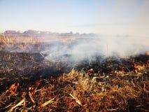 Gebiedsbrand en zware rook royalty-vrije stock afbeeldingen