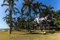Gebiedshotel, een hotel met een groot grondgebied, het grondgebied van Hotelmambasa, hotel met groen grondgebied, ph Royalty-vrije Stock Fotografie