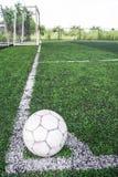Gebiedslijn en kunstmatig gras Stock Afbeelding
