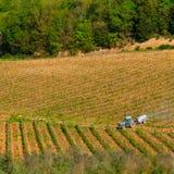 Gebiedsmotor in de wijngaard Royalty-vrije Stock Afbeeldingen