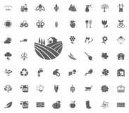 Gebiedspictogram Het tuinieren en geplaatste hulpmiddelen vectorpictogrammen Royalty-vrije Stock Fotografie