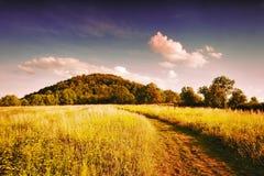 Gebiedsweg die tot de heuvel aan Radobyl-heuvel op beschermde landschapsgebieden Ceske Stredohori in Tsjechisch de zomerlandschap Royalty-vrije Stock Foto's