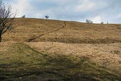 Gebietssandsteinbruch, der Rohstoffe für den Stoß produziert Stockfoto