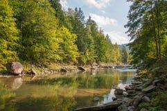 Gebirgs-Karpaten-Fluss Stockfotografie