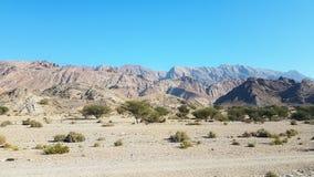 Gebirgs- und der Naturgroßes Land Oman stockfotos