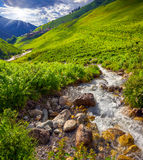 Gebirgsbach im Tal des Dorfs Adishi Stockbilder
