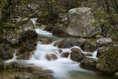 Gebirgsbach mit kleinen Wasserfällen Stockfotos
