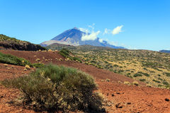 Gebirgsel Teide und grüne Büsche Lizenzfreie Stockfotografie