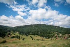 Gebirgsfelder und Kiefernwald Stockfotos