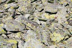Gebirgsfelsen mit grüner Flechtenbeschaffenheit Stockfoto
