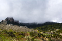 Gebirgsfelsen unter Nebel Stockfoto