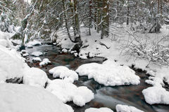 Gebirgsfluß im Winterwald Stockbilder