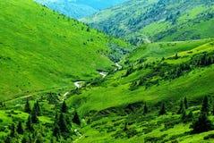 Gebirgsfluß unter grünen Hügeln Stockbild