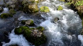 Gebirgsfluss in Abchasien, neues Athos, Kaukasus stock footage