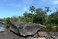 Gebirgsfluss Canio Cristales. Kolumbien lizenzfreie stockfotos