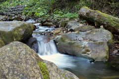 Gebirgsfluss, der den Wald durchfließt lizenzfreies stockfoto