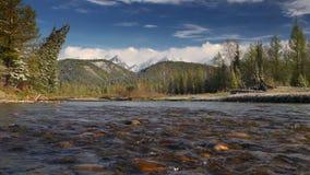 Gebirgsfluss, der in einen slowmotion, Frühlingswald und in schneebedeckte Berge fließt stock footage