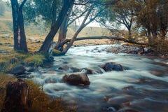 Gebirgsfluss, der unter moosigen Steinen durch den bunten Wald fließt Lizenzfreies Stockfoto