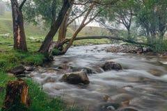 Gebirgsfluss, der unter moosigen Steinen durch den bunten Wald fließt Lizenzfreie Stockfotografie