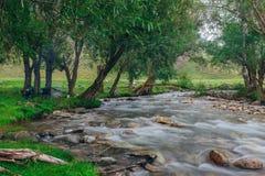 Gebirgsfluss, der unter moosigen Steinen durch den bunten Wald fließt Stockfotos